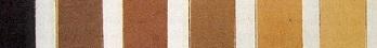 colored pencil different skin tones