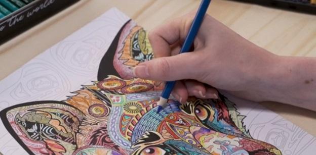 zenacolor colored pencils details